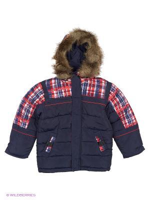 Куртка для мальчика Шотландец Пралеска. Цвет: темно-синий