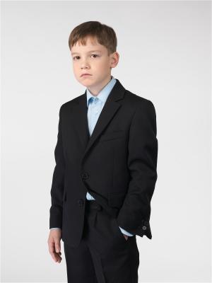 Пиджак Paxton. Цвет: черный