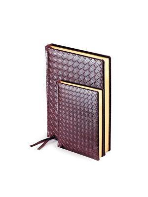 Ежедневник а6+ п/дат. magnum(бордовый) Bruno Visconti. Цвет: бордовый