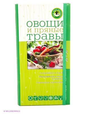 Овощи и пряные травы Эксмо. Цвет: зеленый