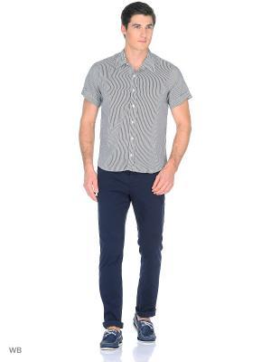 Рубашка AMATO. Цвет: черный, белый