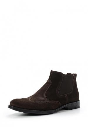 Ботинки Mauromauro. Цвет: коричневый