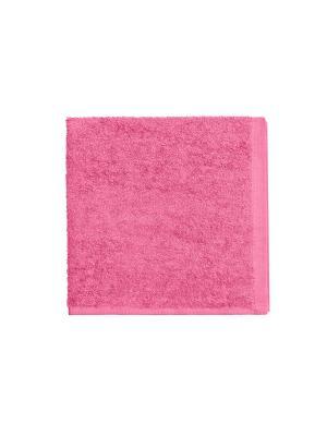 Махровое полотенце-розовый-40х40-100% хлопок, УзТ-МПБ-005-08-04 Aisha. Цвет: розовый