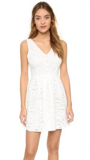 Кружевное мини-платье Kerry BB Dakota. Цвет: золотой