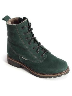 Ботинки Ионесси. Цвет: зеленый
