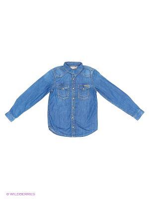 Рубашка PEPE JEANS LONDON. Цвет: синий, бордовый, молочный