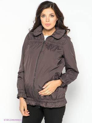 Куртка для беременных 40 недель. Цвет: коричневый