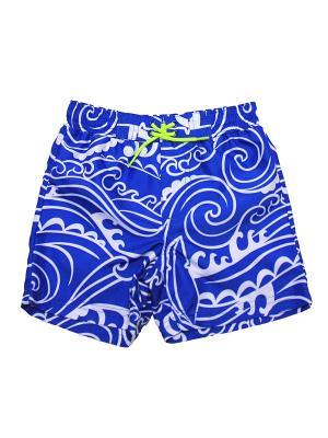 Шорты пляжные Волна Little Me. Цвет: белый, синий