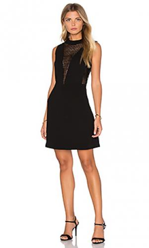 Платье со вставкой с блестками elisa Deby Debo. Цвет: черный