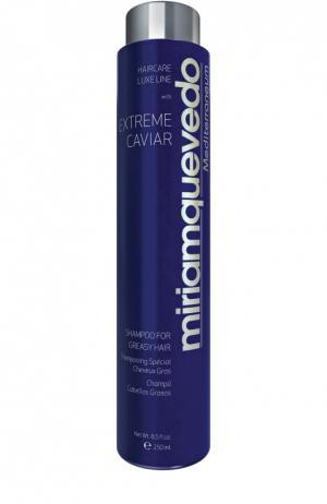 Шампунь для жирных волос с экстрактом черной икры Miriamquevedo. Цвет: бесцветный