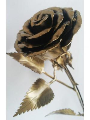 Роза Chic a loco. Цвет: черный, золотистый