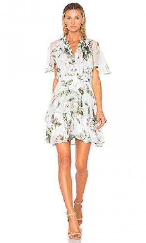 Платье мини watercolor flutter Lover. Цвет: мята