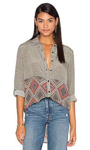 Рубашка selina Tolani. Цвет: черный