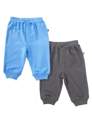 Комплект из 2-х штанишек для мальчика Little Me. Цвет: синий, серый