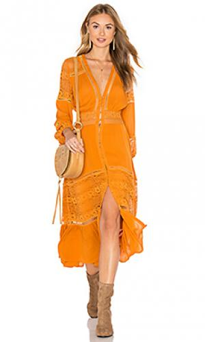 Кружевное платье olivia Spell & The Gypsy Collective. Цвет: оранжевый