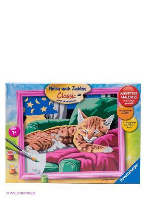 Раскраска по номерам Спящий котенок Ravensburger. Цвет: коричневый, малиновый, бежевый, зеленый