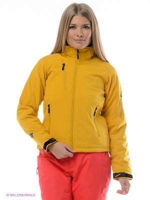 Куртка STORMTECH. Цвет: желтый