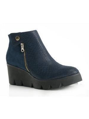 Ботинки Bosccolo. Цвет: темно-синий