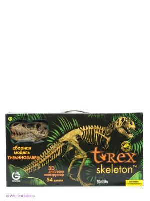 G.Сборная модель Скелет Динозавра Т-Рекса Deluxe,1к10, 54 детали,упаковка на рус Geoworld. Цвет: зеленый