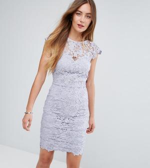 Paper Dolls Tall Кружевное платье мини с фигурной отделкой. Цвет: серый