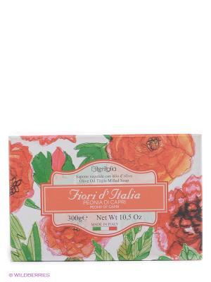 Высококачественное  натуральное растительное мыло Iteritalia. Цвет: красный, зеленый