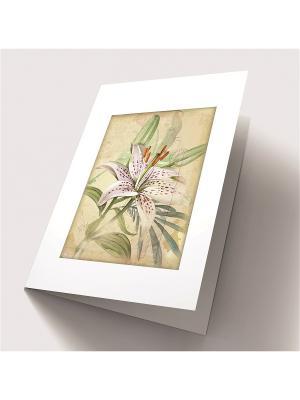 Набор для создания открытки Тигровая лилия Матренин Посад. Цвет: зеленый, бежевый, фиолетовый