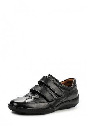 Кроссовки Canguro. Цвет: черный