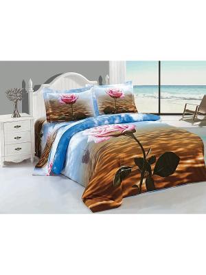 Комплект постельного белья Soft Line. Цвет: голубой, коричневый
