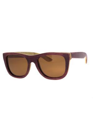 Очки TM0019-B-6-SK SKATEBOARD TEHMODA. Цвет: коричневый