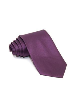 Галстук Churchill accessories. Цвет: сливовый, темно-фиолетовый, фиолетовый