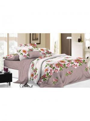 Комплект постельного белья евро, поплин BegAl. Цвет: светло-коричневый