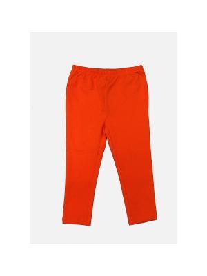 Спортивные брюки LAVIDO. Цвет: оранжевый