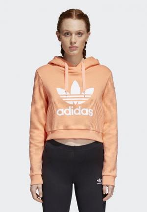 Худи adidas Originals. Цвет: оранжевый