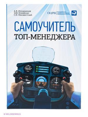 Самоучитель топ-менеджера Альпина Паблишер. Цвет: голубой