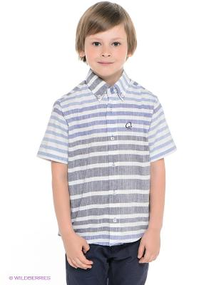 Рубашка Ilgaz kids. Цвет: белый, синий, светло-голубой