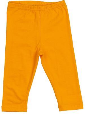 Леггинсы KIDONLY. Цвет: оранжевый