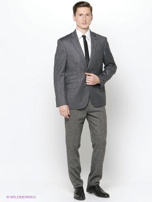 Пиджак DOUGLAS. Цвет: серый
