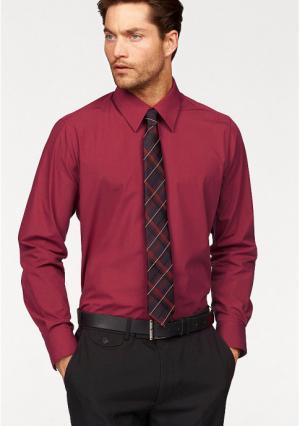 Рубашка STUDIO COLETTI. Цвет: белый, голубой, красный, темно-серый, черный