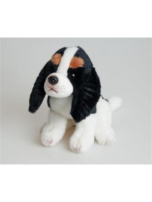 Собака Эля Fancy. Цвет: белый