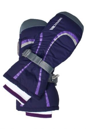 Варежки Trespass. Цвет: violet