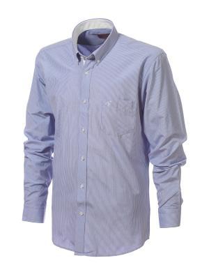 Рубашка BIRIZ. Цвет: голубой