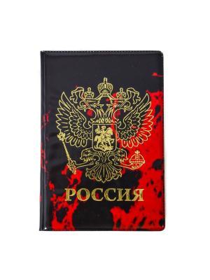 Обложка для паспорта Bizon. Цвет: красный