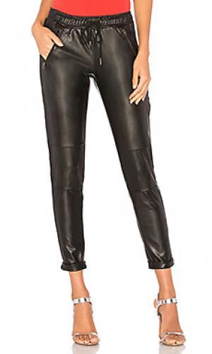 Спортивные брюки David Lerner. Цвет: черный