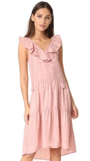 Платье с оборками Stephanie Whistles. Цвет: розовый