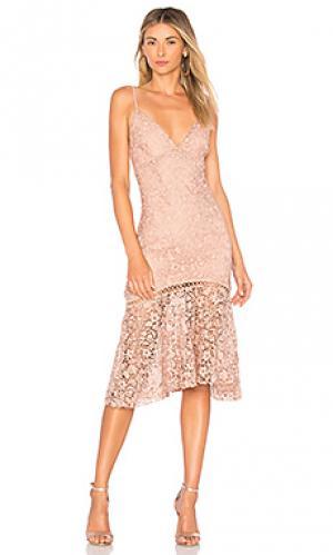 Кружевное платье diana Karina Grimaldi. Цвет: rose