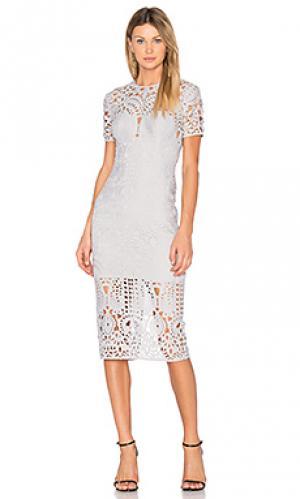 Облегающее миди платье harmony Lover. Цвет: серый
