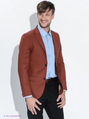 Пиджак ABSOLUTEX. Цвет: терракотовый
