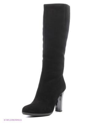 Сапоги Moda Donna. Цвет: черный
