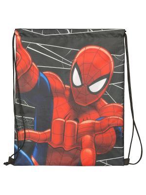 Мешок для обуви. Spider-man Classic. Цвет: красный, черный, синий
