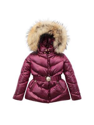 Куртка Pulka. Цвет: малиновый